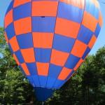 Larry & Ann Nelson Balloon